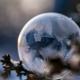 crystal-ball-winter