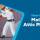 How to Remove Mold From Attic Plywood