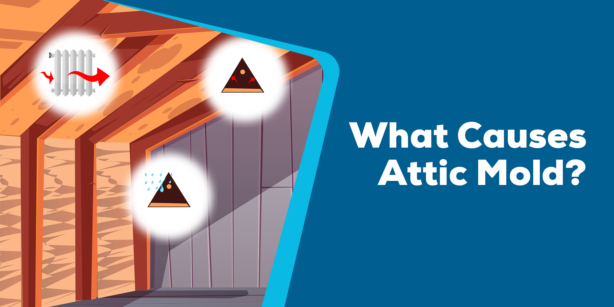 What Causes Attic Mold