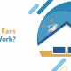 Do Attic Fans Really Work?