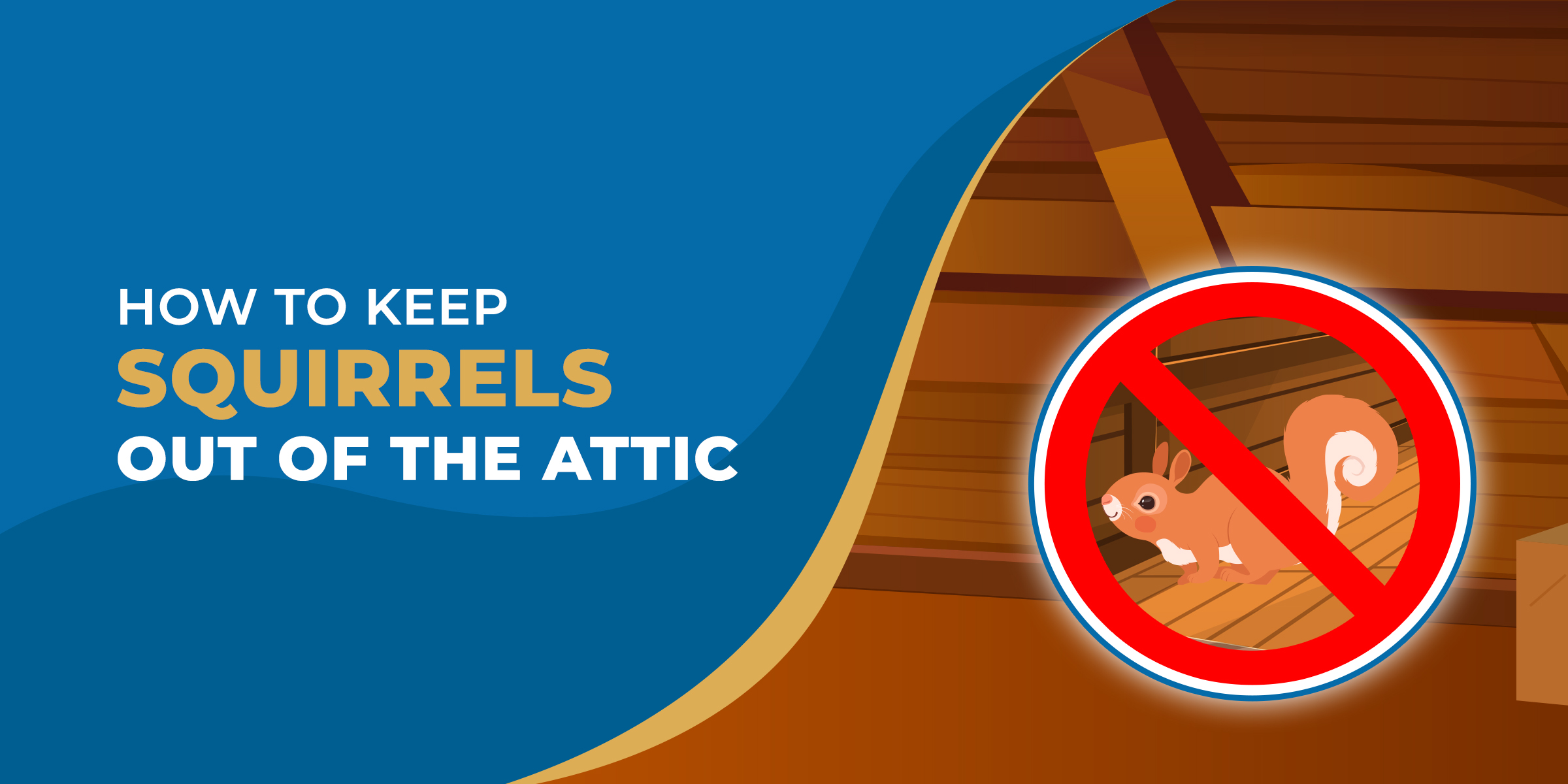 How to Keep Squirrels Out of the Attic