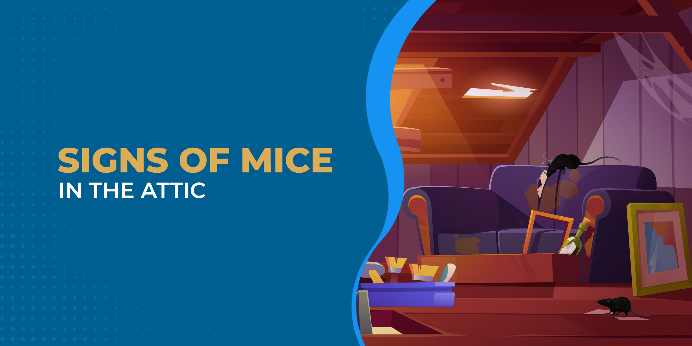 Signs of Mice in the Attic
